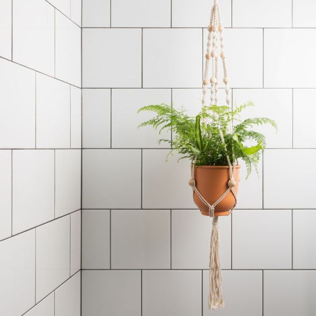 fern-in-macrame-on-tiles-royalty-free-image-1012407962-1549471878.jpg